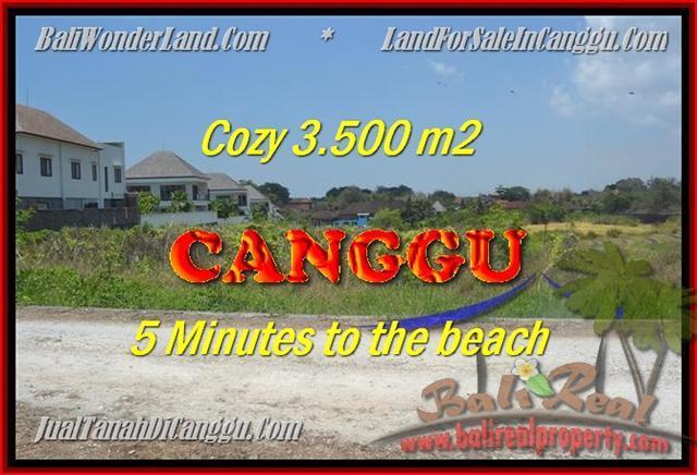 TANAH di CANGGU JUAL MURAH 3.500 m2  View sawah lingkungan villa