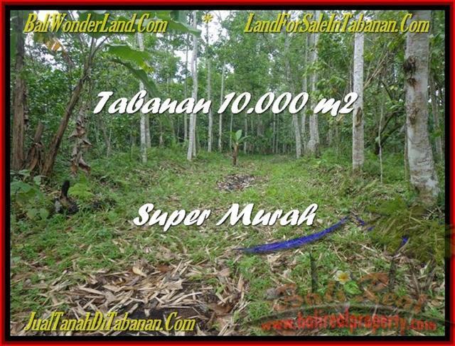 DIJUAL TANAH MURAH di TABANAN Untuk INVESTASI TJTB177