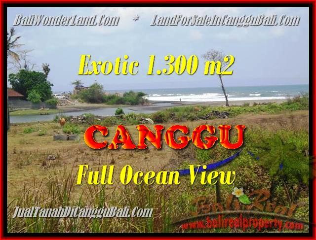 TANAH di CANGGU BALI DIJUAL 1.300 m2  View sawah dan laut lingkungan villa