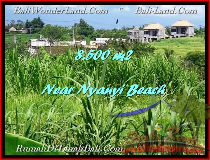 JUAL TANAH di TABANAN BALI 85 Are View sawah dan Sungai