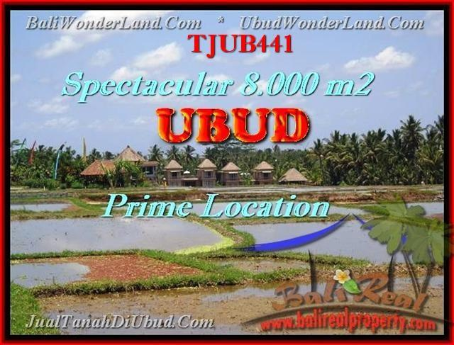 JUAL TANAH di UBUD TJUB441