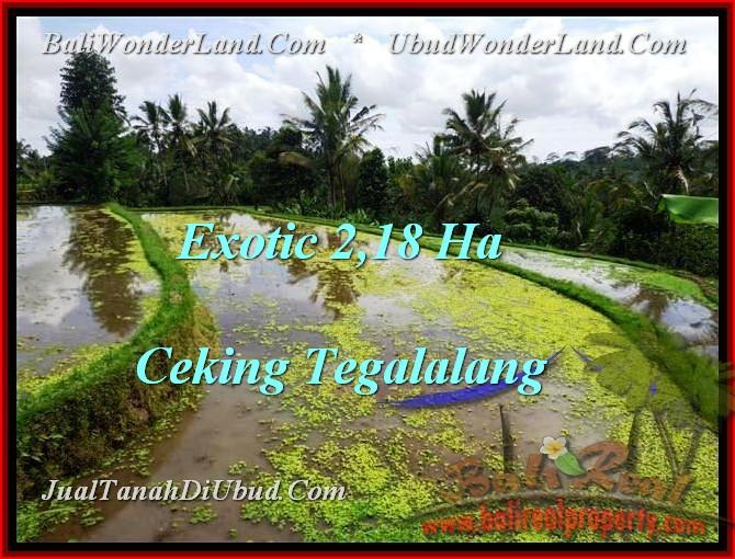 TANAH MURAH di UBUD DIJUAL 21,800 m2 di Ubud Tegalalang