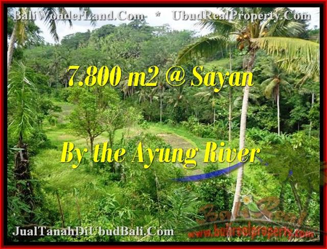 TANAH MURAH di UBUD 78 Are View tebing,sawah,sungai ayung