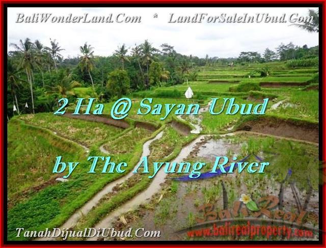 TANAH MURAH di UBUD 200 Are View tebing,sawah,sungai ayung – TJUB473