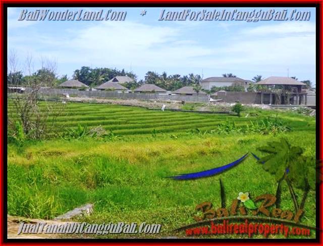 TANAH di CANGGU BALI DIJUAL 1.450 m2 di Canggu Cemagi