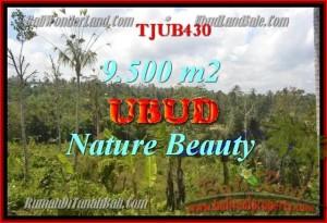 JUAL TANAH MURAH di UBUD 9,500 m2 View hutan, sungai dan sawah