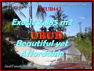 TANAH DIJUAL di UBUD 2.885 m2 View Sawah dan sungai Kecil