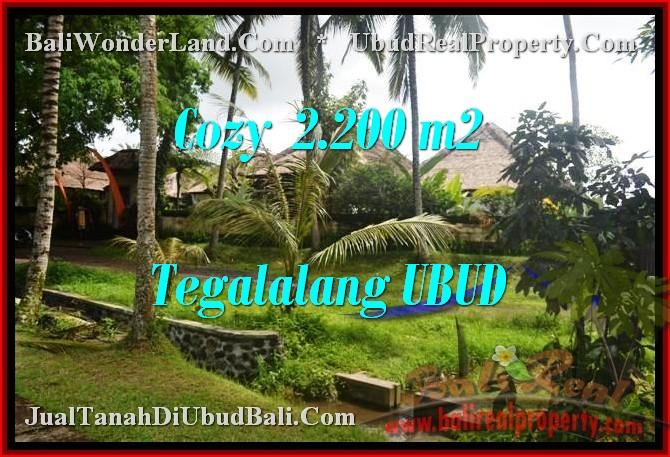 JUAL MURAH TANAH di UBUD BALI Untuk INVESTASI TJUB462