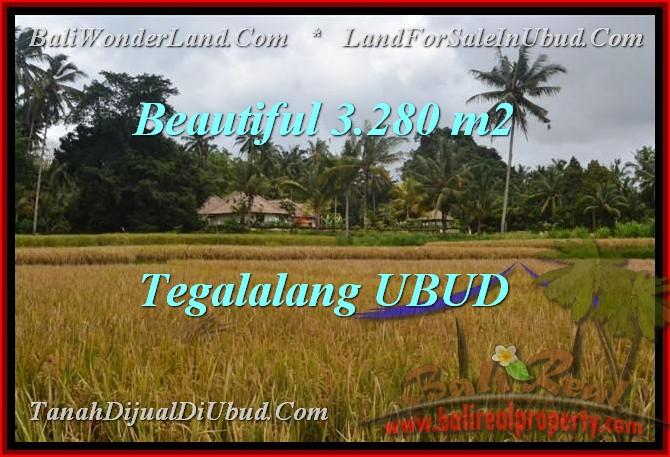 DIJUAL TANAH MURAH di UBUD BALI 3,280 m2 di Ubud Tegalalang