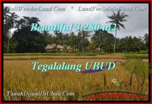 JUAL MURAH TANAH di UBUD 32.8 Are View Sawah link Villa