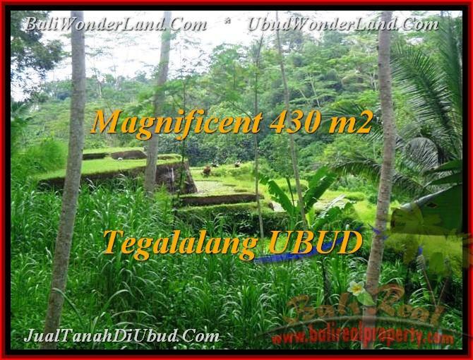 TANAH DIJUAL di UBUD 430 m2  View Sawah, sungai, link Villa