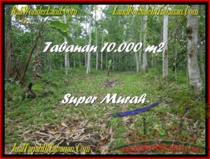 TANAH DIJUAL MURAH di TABANAN BALI 10.000 m2 di Tabanan Penebel