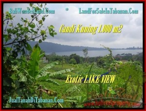 TANAH di TABANAN DIJUAL Untuk INVESTASI TJTB179