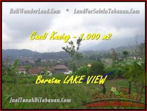 JUAL TANAH MURAH di TABANAN BALI 10 Are View Danau Beratan dan Gunung