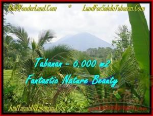 TANAH DIJUAL MURAH di TABANAN BALI Untuk INVESTASI TJTB182
