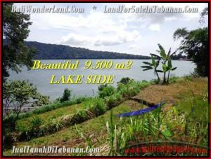 TANAH JUAL MURAH  TABANAN 9,500 m2  view danau Beratan dan gunung