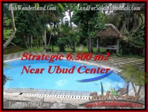 TANAH MURAH di UBUD Untuk INVESTASI TJUB479