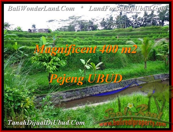 TANAH di UBUD BALI DIJUAL 400 m2 di Ubud Pejeng