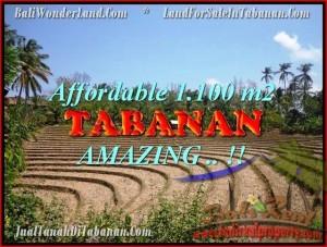 TANAH MURAH di TABANAN BALI Untuk INVESTASI TJTB170