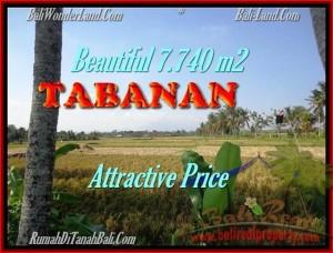 TANAH JUAL MURAH  TABANAN 77,4 Are view sawah dan Gunung