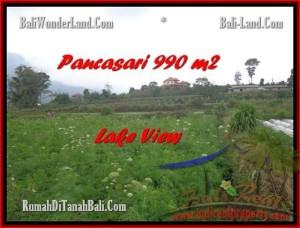 JUAL TANAH di TABANAN BALI 990 m2  View Danau Buyan dan Gunung