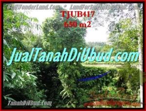 TANAH di UBUD JUAL 6.5 Are View sawah dan pangkung