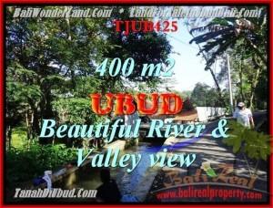 TANAH JUAL MURAH  UBUD BALI 400 m2  View sungai dan Tebing