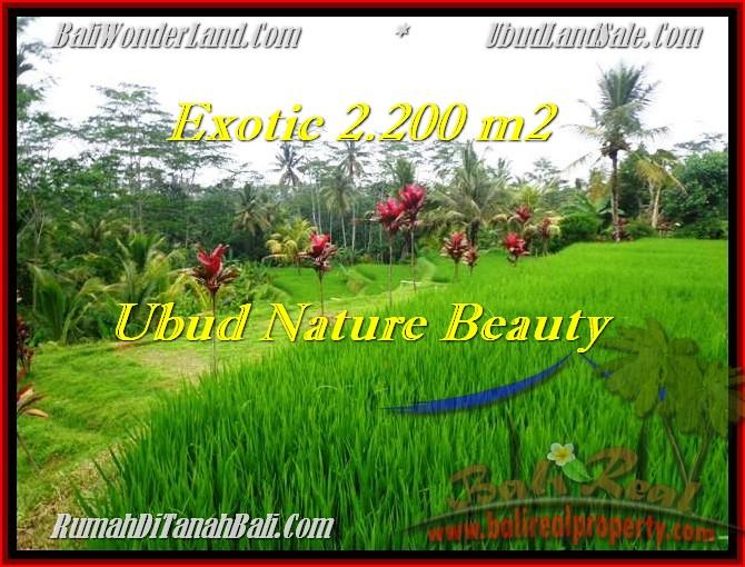 TANAH DIJUAL di UBUD 2,200 m2 di Ubud Tegalalang