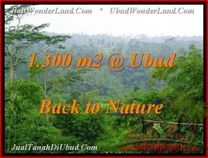 JUAL TANAH MURAH di UBUD 1,300 m2 View Tebing dan Kebun