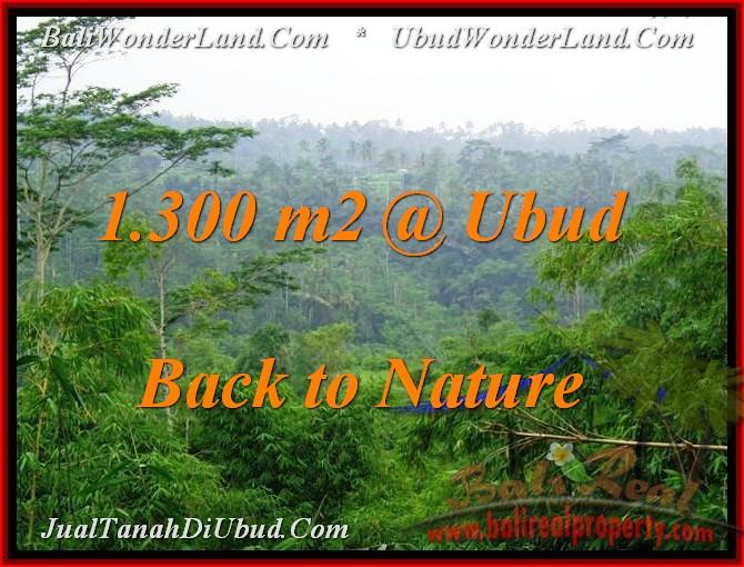 TANAH MURAH di UBUD Untuk INVESTASI TJUB481