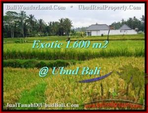 JUAL MURAH TANAH di UBUD Untuk INVESTASI TJUB487