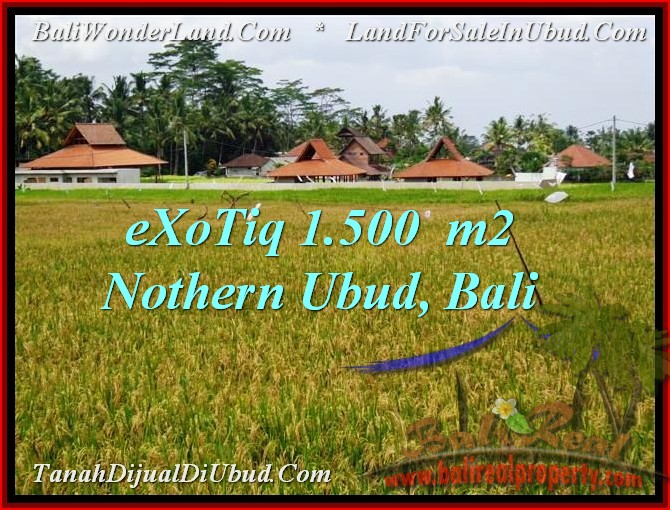 DIJUAL TANAH MURAH di UBUD 1,500 m2 di Sentral Ubud