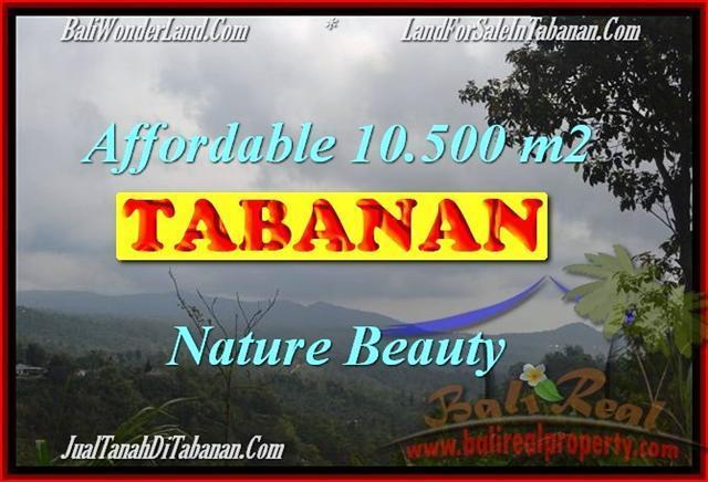 TANAH di TABANAN DIJUAL 10,500 m2 di Sukasada