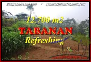 TANAH JUAL MURAH  TABANAN 12,700 m2  View kebun dan gunung