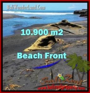 TANAH MURAH di TABANAN BALI 10,900 m2  View sawah, gunung, dan laut