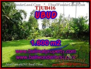 JUAL TANAH MURAH di UBUD BALI 16 Are View sawah dan sungai