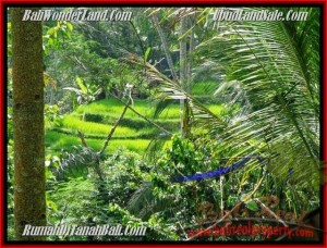 TANAH JUAL MURAH  UBUD 7.25 Are View Tebing,sawah dan sungai