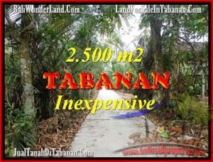 TANAH di TABANAN BALI DIJUAL MURAH 2,500 m2  View kebun