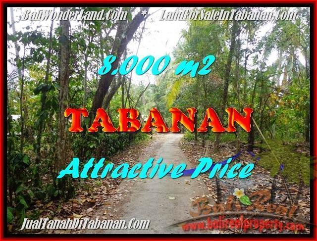 JUAL TANAH MURAH di TABANAN BALI 8,000 m2  View kebun