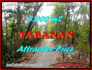 JUAL TANAH MURAH di TABANAN BALI Untuk INVESTASI TJTB161