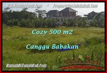 JUAL TANAH MURAH di CANGGU 500 m2  View laut dan sawah link villa