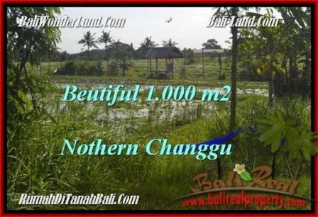DIJUAL MURAH TANAH di CANGGU BALI 1,000 m2 di Canggu Batu Bolong