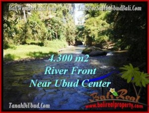 TANAH di UBUD BALI DIJUAL MURAH 43.15 Are View Sungai dan tebing