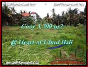 TANAH MURAH di UBUD BALI 3,200 m2 di Sentral Ubud