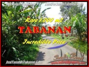 TANAH JUAL MURAH  TABANAN 1.000 m2  View kebun