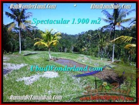 JUAL TANAH di UBUD BALI 1,900 m2  View Sawah link villa