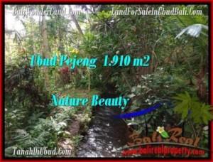 TANAH JUAL MURAH  UBUD 19.1 Are View Tebing dan sungai kecil