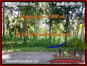 TANAH di UBUD DIJUAL 2,000 m2 di Ubud Payangan