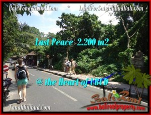 DIJUAL TANAH di UBUD BALI 2,200 m2 di Sentral Ubud