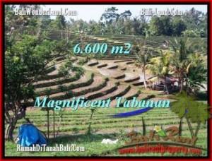 TANAH di TABANAN BALI DIJUAL MURAH 66 Are View Gunung sawah dan laut